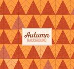 秋季树形花纹背景