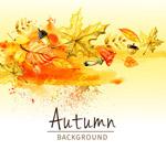 秋季树叶和蘑菇