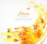 秋季风和树叶