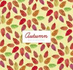 秋季树叶背景