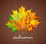 彩色秋季树叶花束