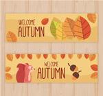 秋季banner