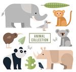 扁平化动物