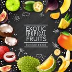 热带水果框架