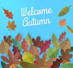 彩绘秋季落叶堆