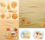 鱼与沙滩上的贝壳