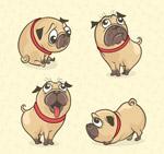 彩绘巴哥犬