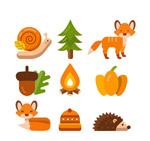 秋季森林动植物