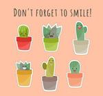 微笑仙人掌盆栽