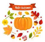 彩色秋季植物