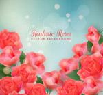 红色玫瑰花丛