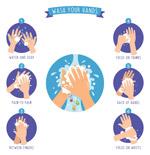 洗手步骤插画