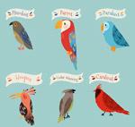 标注名称的鸟类