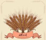 手绘麦束设计