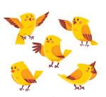 黄色鸟设计矢量