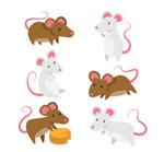 创意老鼠设计
