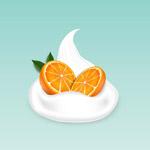 橙子和酸奶矢量