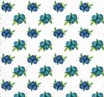 手绘蓝莓无缝背景