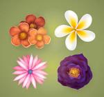 逼真春季花卉