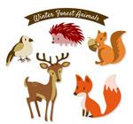 美丽森林动物