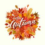 你好秋季艺术字