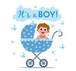 婴儿车里的男婴