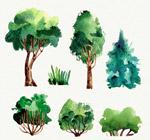 水彩绘绿色树木