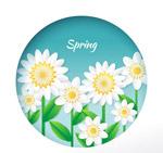 春季白色花丛