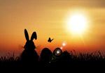 兔子和彩蛋剪影