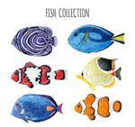 水彩绘鱼类