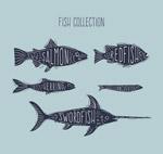 手绘带名字的鱼类