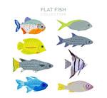扁平化彩色鱼类