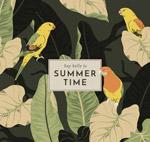夏季鹦鹉和叶子