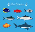 创意海洋鱼类