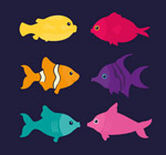 彩色鱼类设计