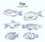 蓝色手绘海洋鱼类