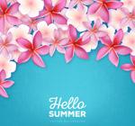 夏季�t�u蛋花