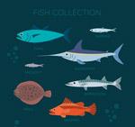 彩色海洋鱼类
