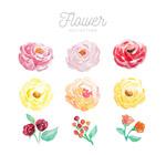 9款水彩绘花朵