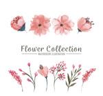 水彩绘粉色花卉