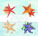 水彩绘海星