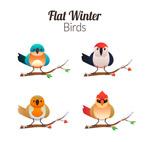 冬季站在树枝上的鸟