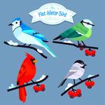 冬季树枝上的小鸟