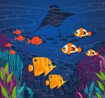 海底热带鱼群风景