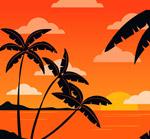 夕阳下的椰子树剪影