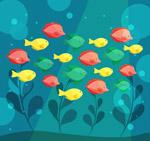 彩色海底鱼群