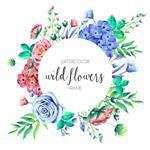 水彩绘野生花卉框架