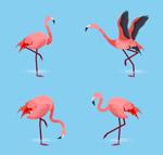 动感粉色火烈鸟