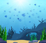 海底世界鱼群风景