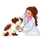 女兽医和宠物狗